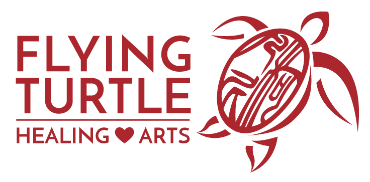 Flying Turtle Logo